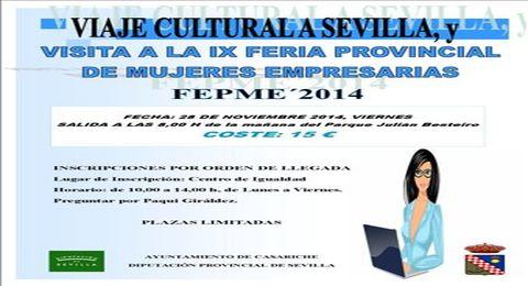 CARTEL VI FERIA PROVINCIAL DE MUJERES EMPRESARIAS 2011