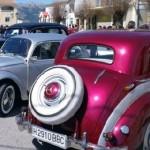 cochesvet